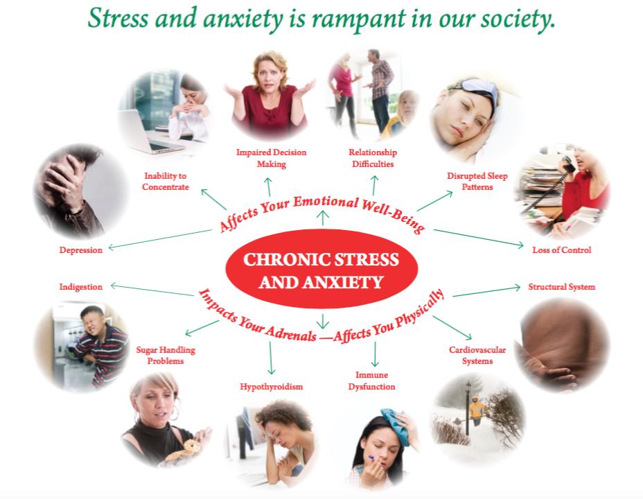 Stress & Anxiety Diagram